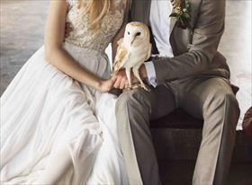 Свадебная фотосессия. Елена и Денис.