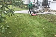 Обработка газона вертикутером
