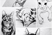 Иллюстрации и скетчи
