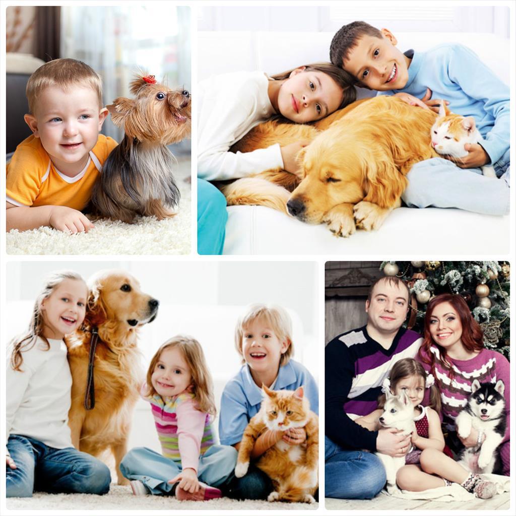 фотосессия семейная фото