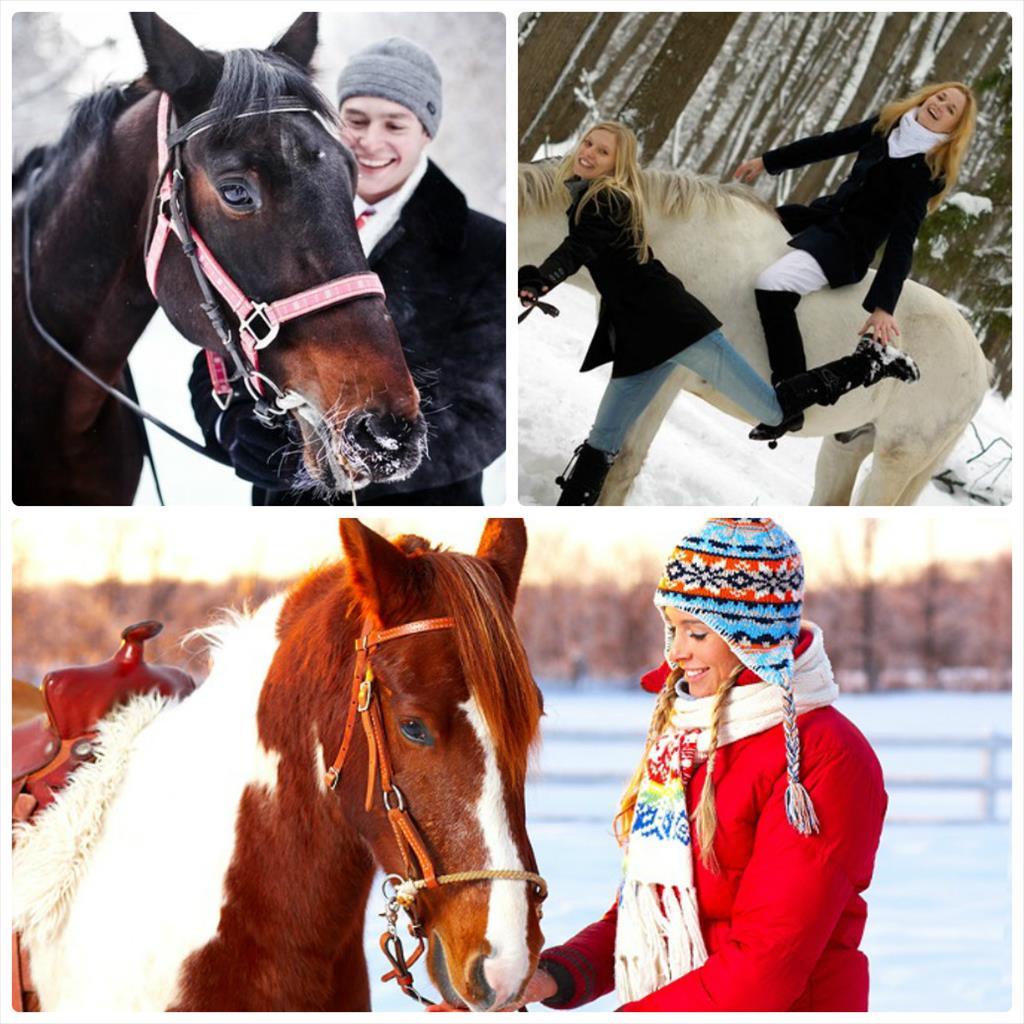 фотосессия с лошадьми зимой фото